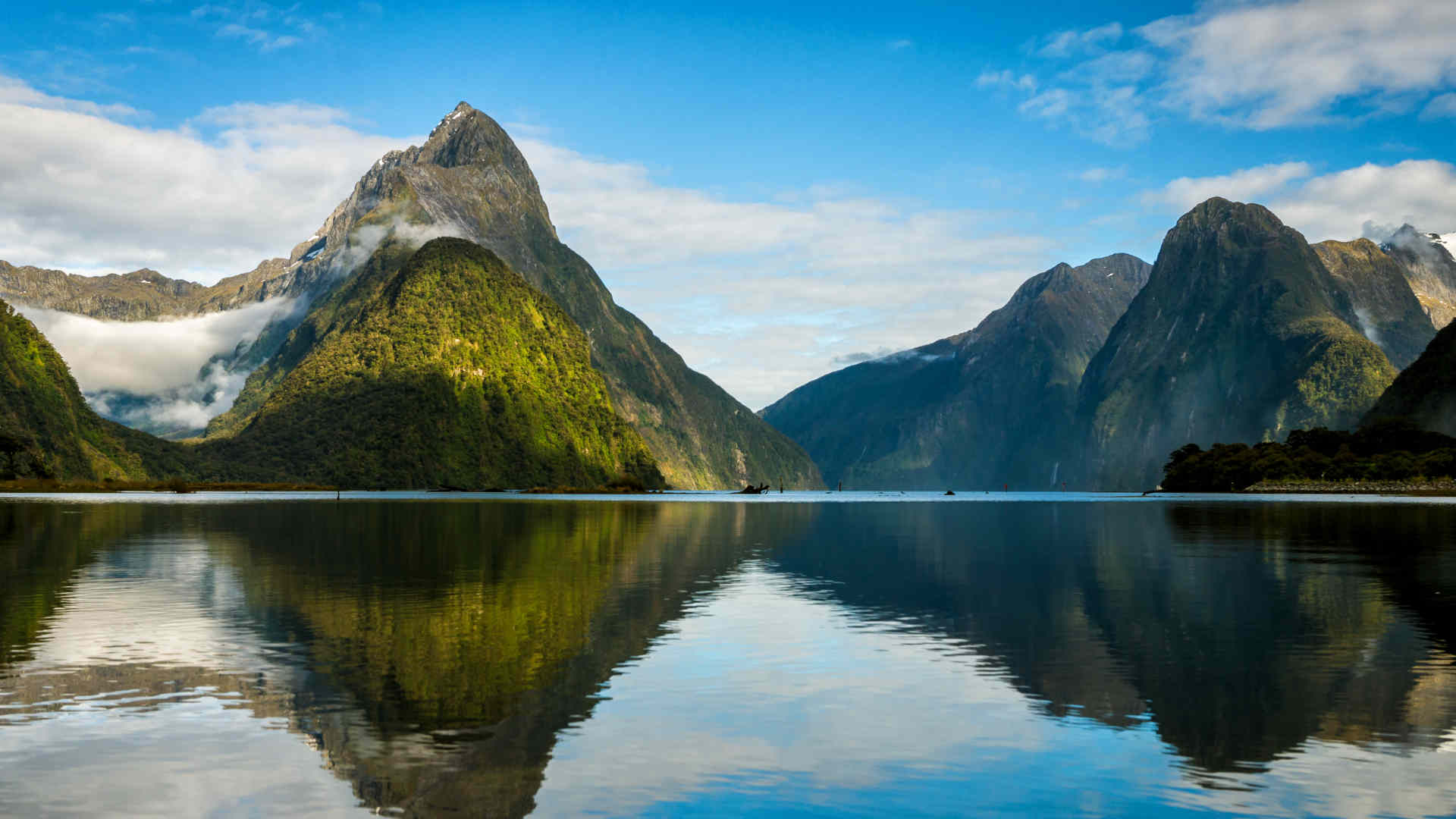 New Zealand – Unique Destination For Holidaymakers